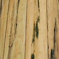 Bamboo Solid:<br /> Distressed Natural